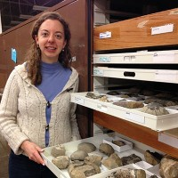 Erica with ammonite fossils in white museum trays in front of open cabinet