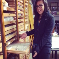 Courtney showing wooden collections drawer